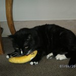 tescher and his bananna