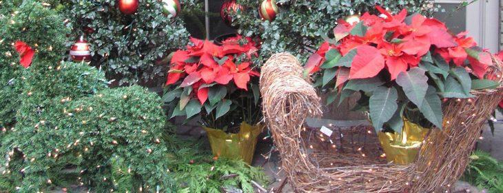 Green reindeer and sleigh
