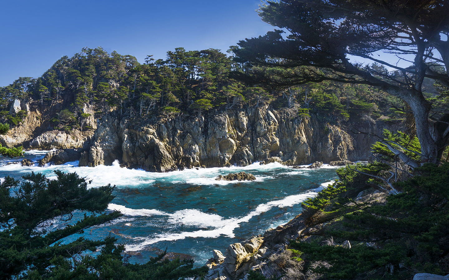 Point Lobos Outlook