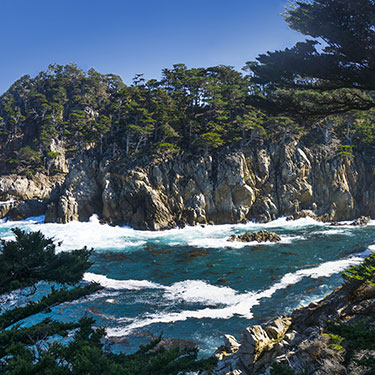 point-lobos-outlook