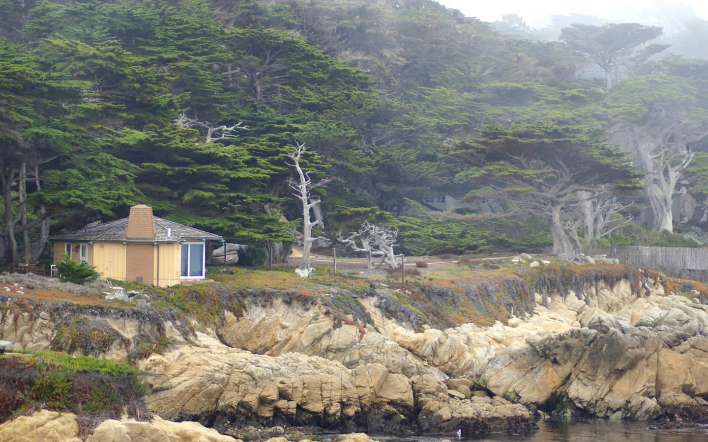 House, trees, and rocky cliffs by the ocean