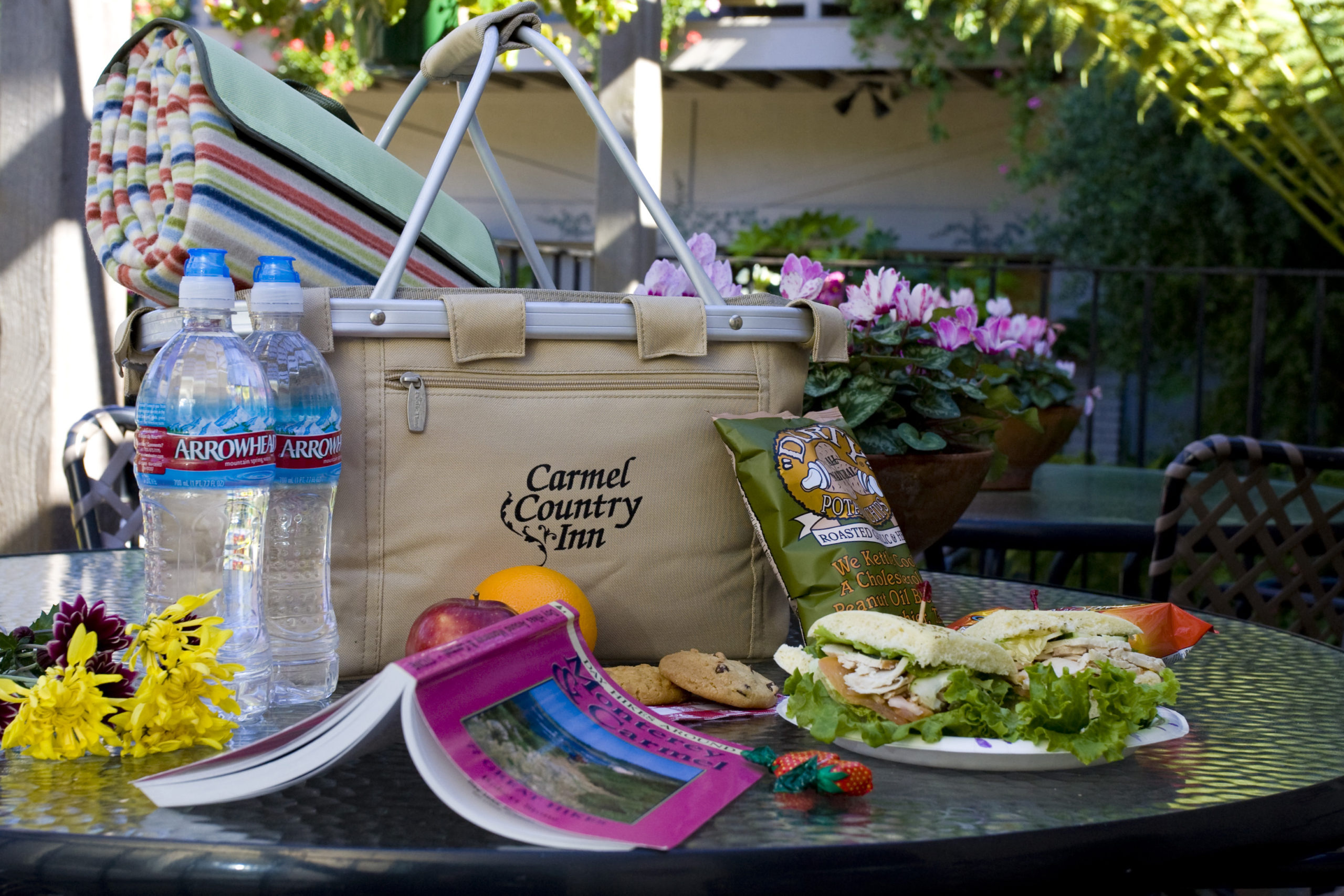 Logo picnic basket with hiking book and picnic for two